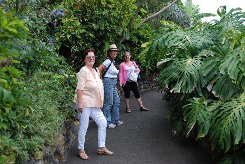 Exploring a mini jungle?