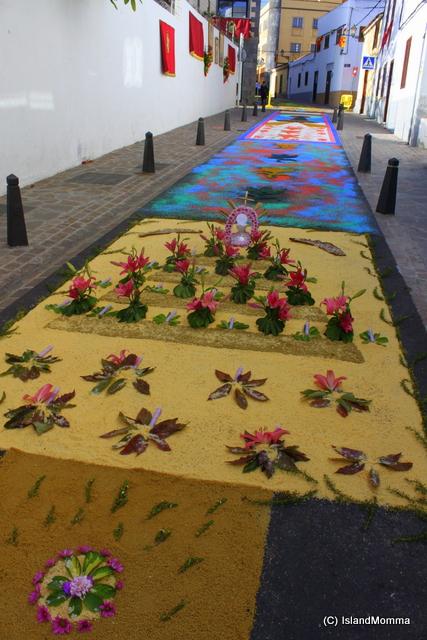 floral carpet corpus chrisit arona