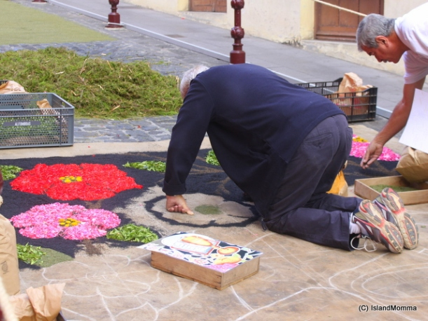 flower carpets la orotava