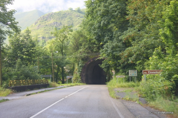 Tunnel covered with vegetation