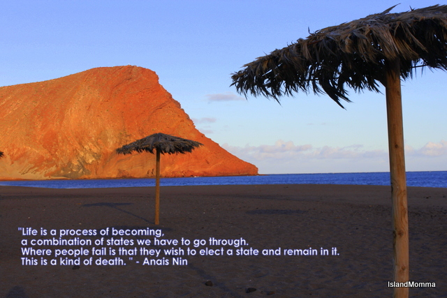 This quotation from Anais Nin resonated with me from the moment I first read it.