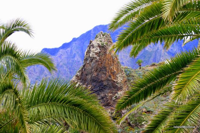 rocks and palms Hermigua
