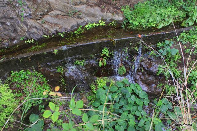 stream hermigua