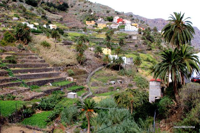 terraces hermigua