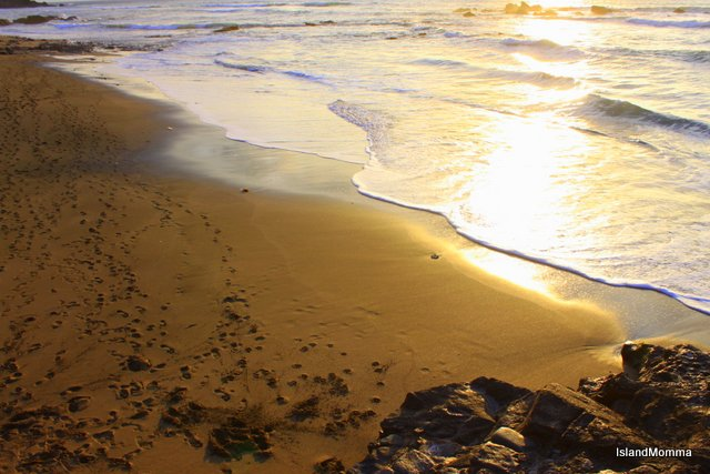 Footsteps on the Sand La Pared Fuerteventura