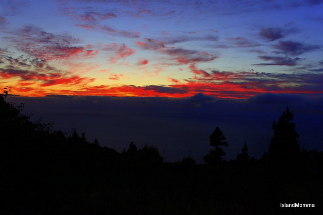 sunset las tricias la palma canary islands