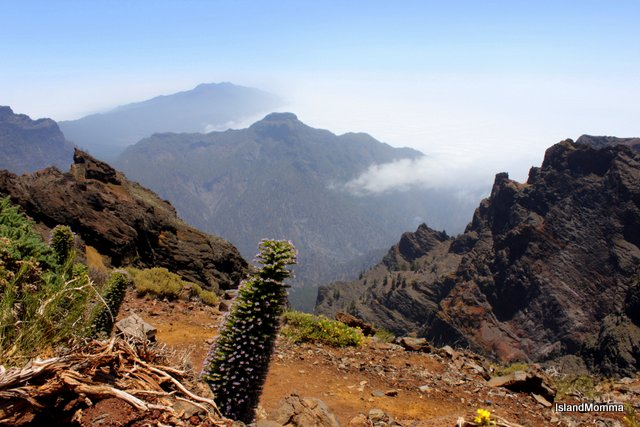 Roque de los Muchachos undoubtedly the point in La Palma which really touched my soul.