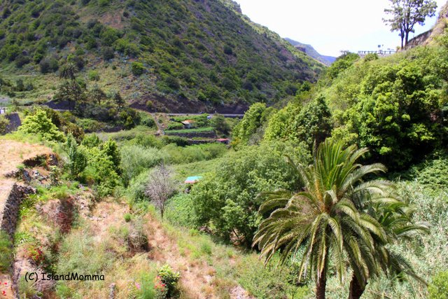 The lush and very beautiful Hermigua valley in La Gomera