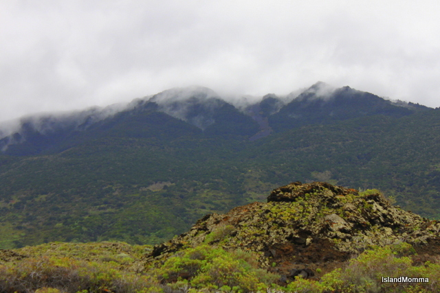 Hillside of El Hierro