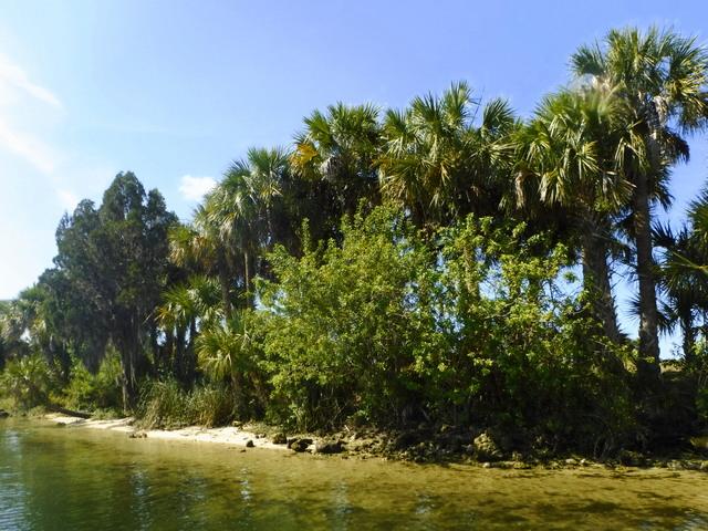 cystal river