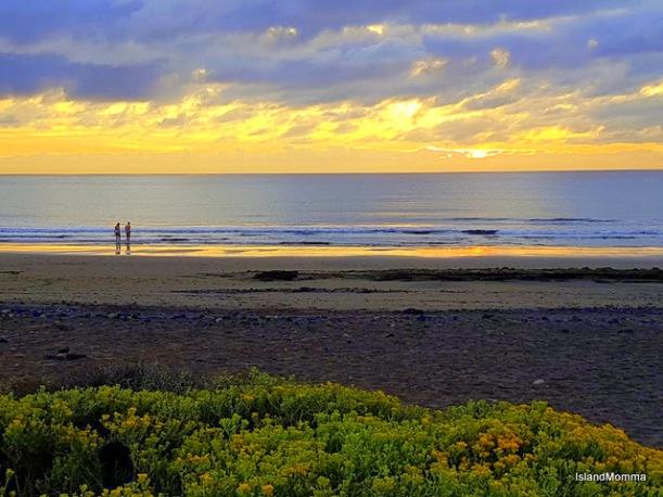 sunrise swimmers